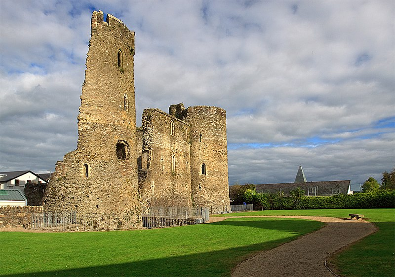 Ferns Castle Wexford