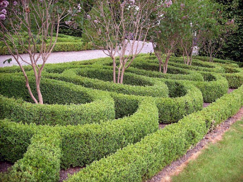 Birr Castle Box Hedges