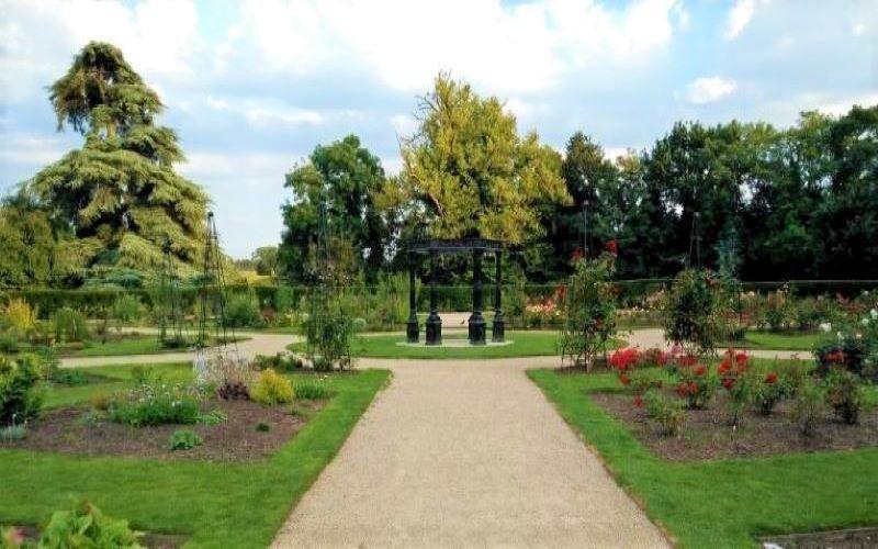 Corkagh Park Rose Garden