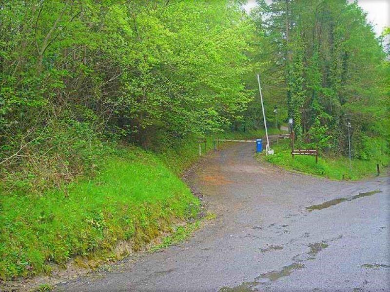 Killykeen Forest Park Cavan
