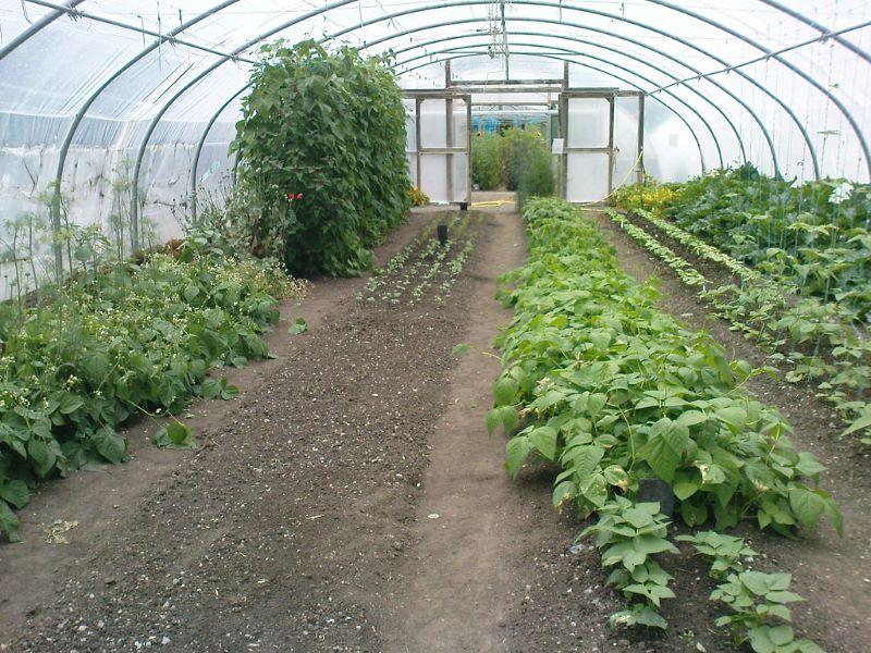 The Organic Center_Rossinver Co Leitrim