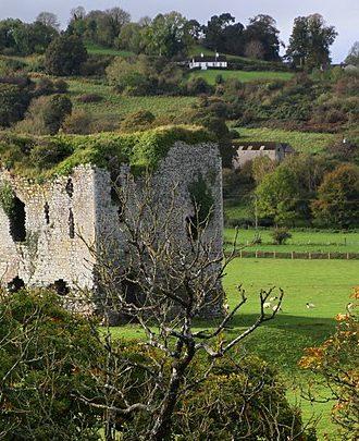 8 Best Castles In Kilkenny, Ireland