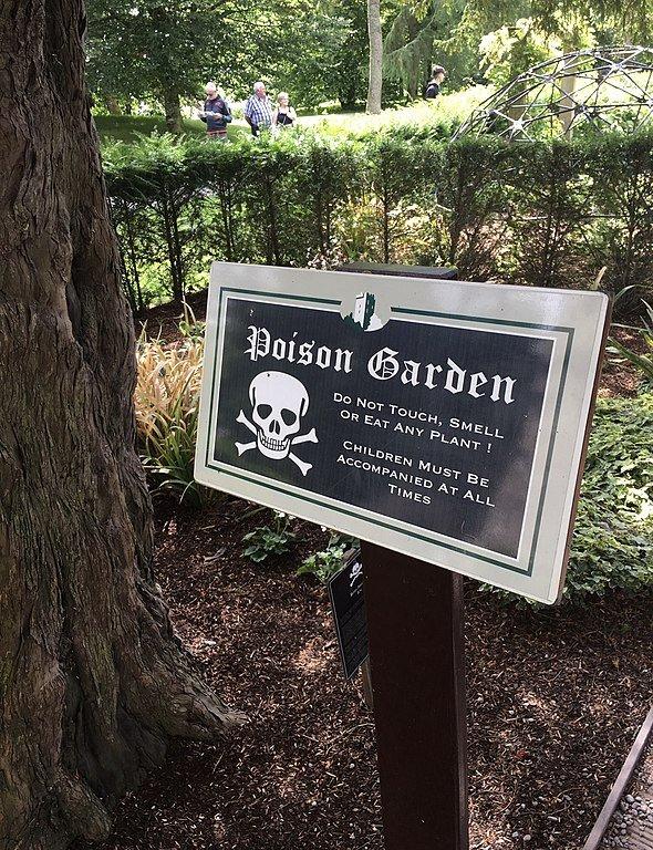 poison garden blarney castle